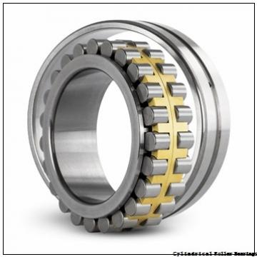 American Roller HCS 307 Cylindrical Roller Bearings